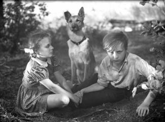 Feature Film - Productions - Ingmar Bergman f0bd4cbaadc08